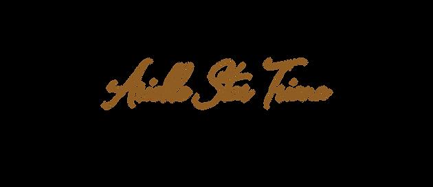 Arielle Star Triana, Heal Through Dance,