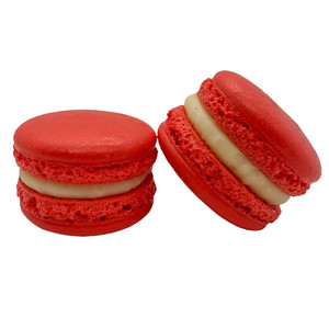 Govern-MINT (Of the People, By the People, For the People) Macaron
