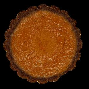 Spicy Not-Pumpkin Tart