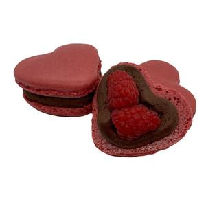 Raspberry Dark Chocolate Macaron