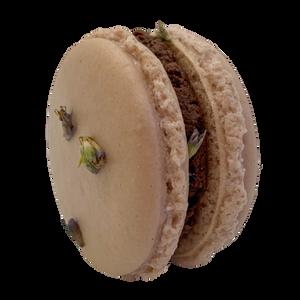 Anise Hyssop Chocolate Macaron
