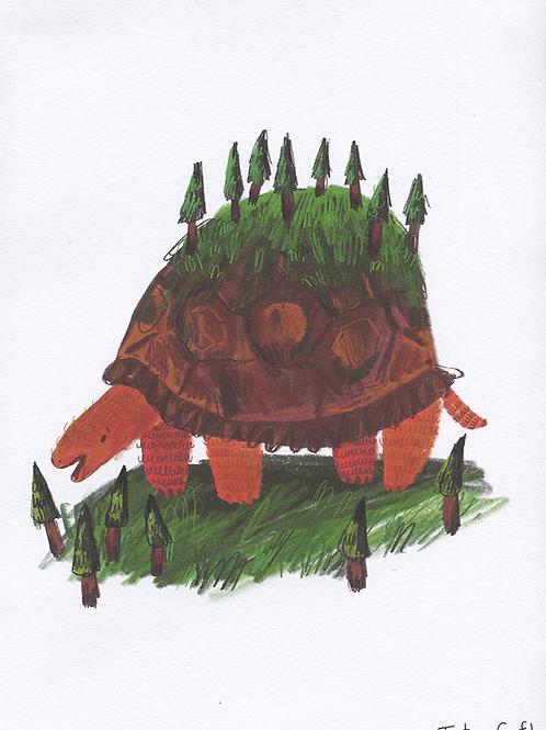 Tortoise Print