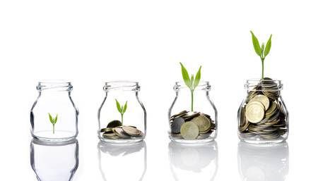 money grow.jpg