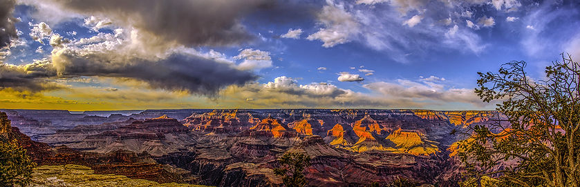 dancingshadows12x37-2 copy (1).jpg