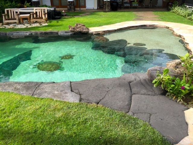 Niuiki Pool with Rock Path