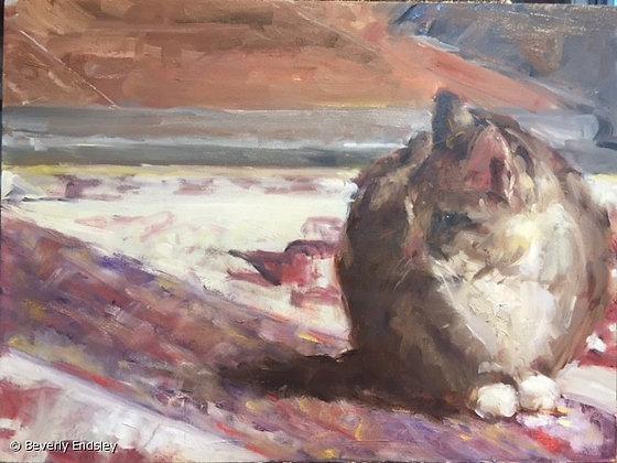 The Monk's Cat