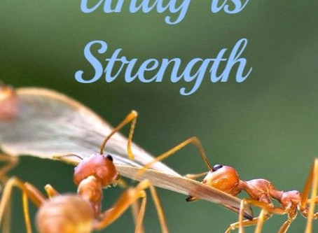 We Are Strongest Together!