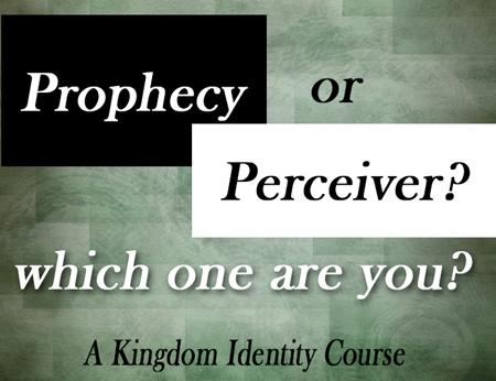 perceiver-tag2.png