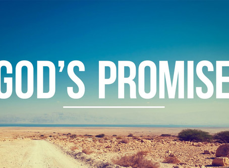 God's Promise To You!