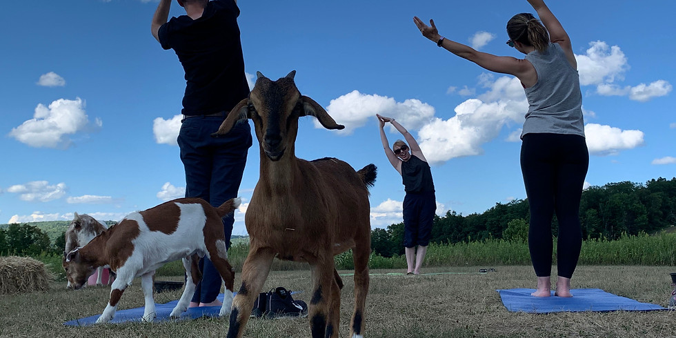 Private CPN Goat Yoga on the Homestead