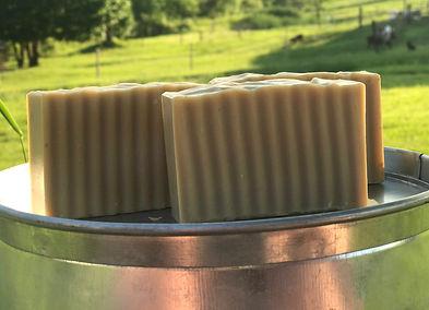 Goldenrod Goat Milk Soap