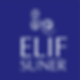 Elif Suner Leadership Executive Coaching Training Consulting