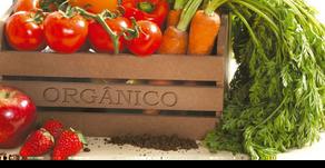 ¿Vale la pena invertir en alimentos orgánicos?