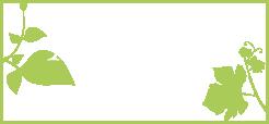 logo-MBlondel-1.png