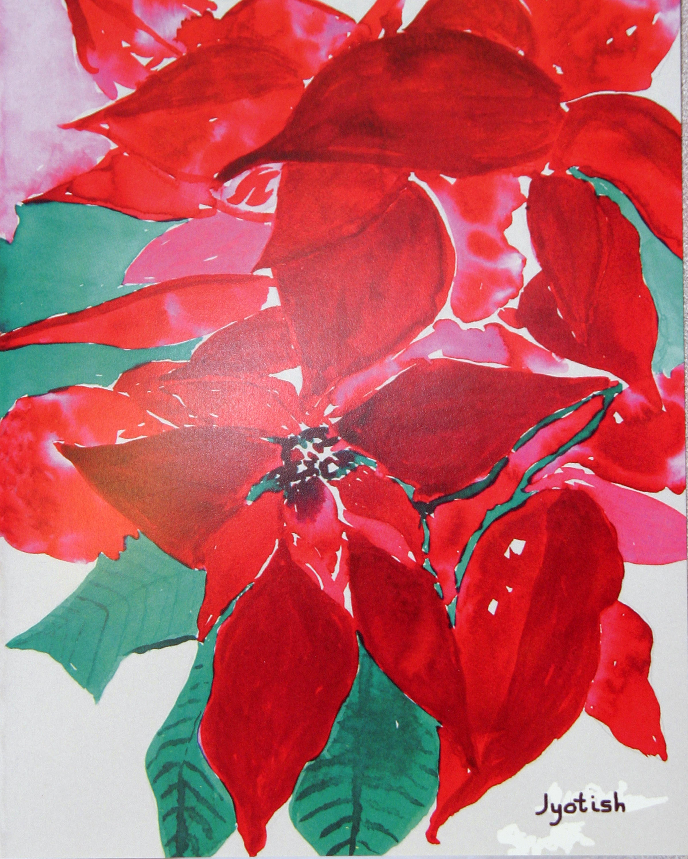 Poinsettia by Nayaswami Jyotish