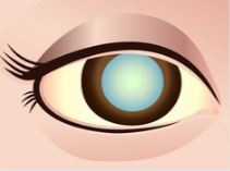 Study Finds No Need To Delay Cataract Surgery In Patients With Elevated Hemoglobin A1c