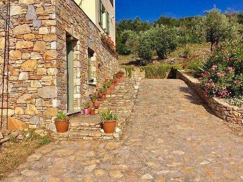 Stone driveway, olive grove and villa.