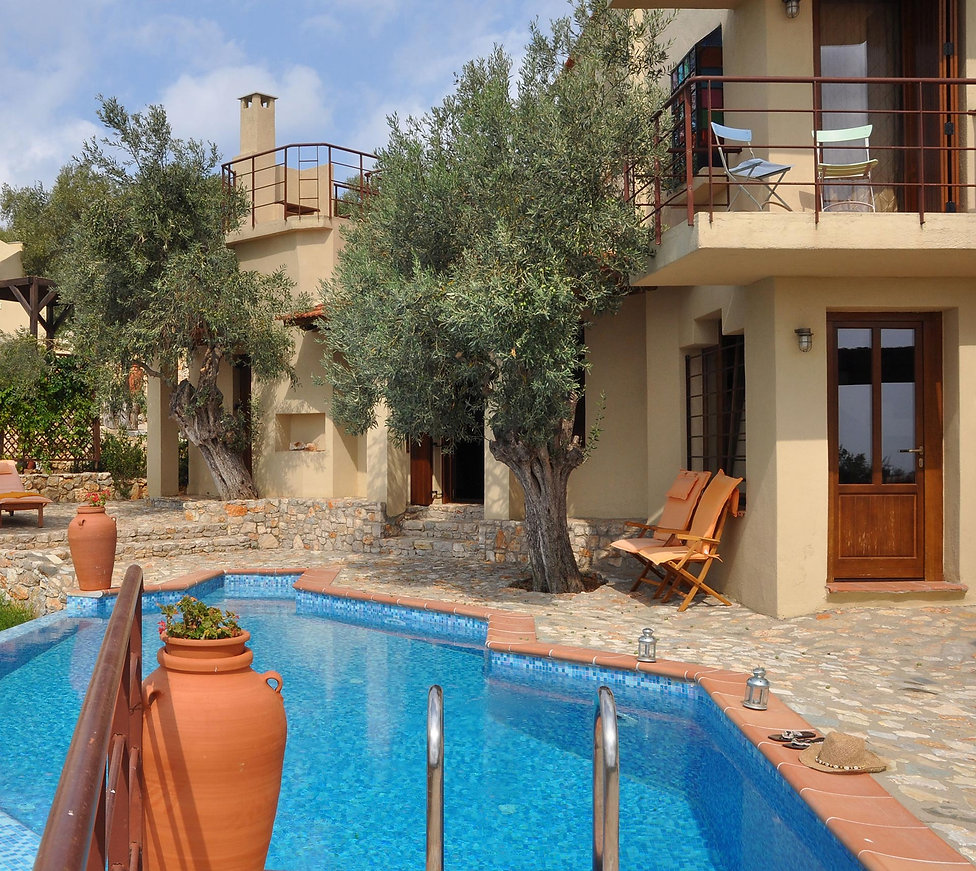 11.villa-Petra-yard-with-swimming-pool.j
