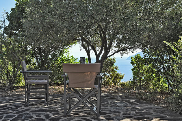 Shade of an olive tree with chairs under