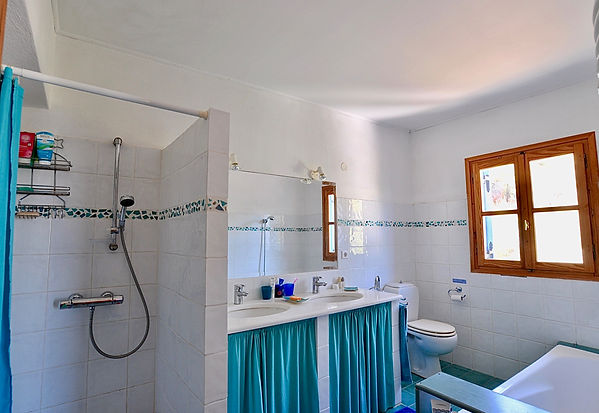 Bathroom withshower and twin basins