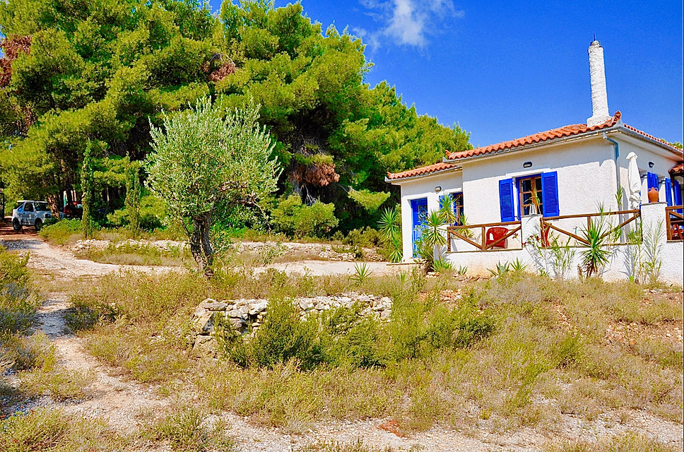 Alonissos house with trees behind