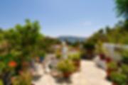Courtyard style garden in Kalamakia, Alonissos
