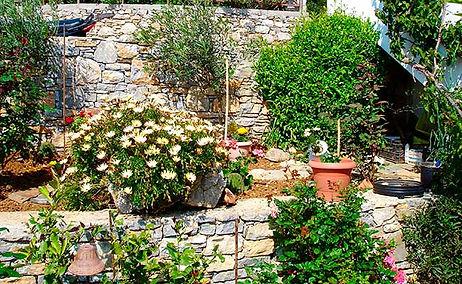 kali-thea-garden.jpg
