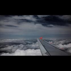 #wingsofdesire