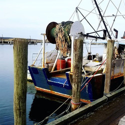 A trip to Menemsha is always worth the d
