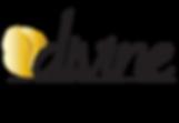 divine-logo-FINAL_logo.png