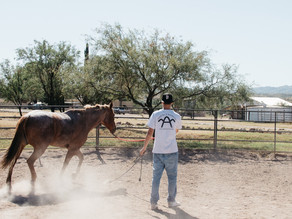 What I learned at Arivaca Boys Ranch