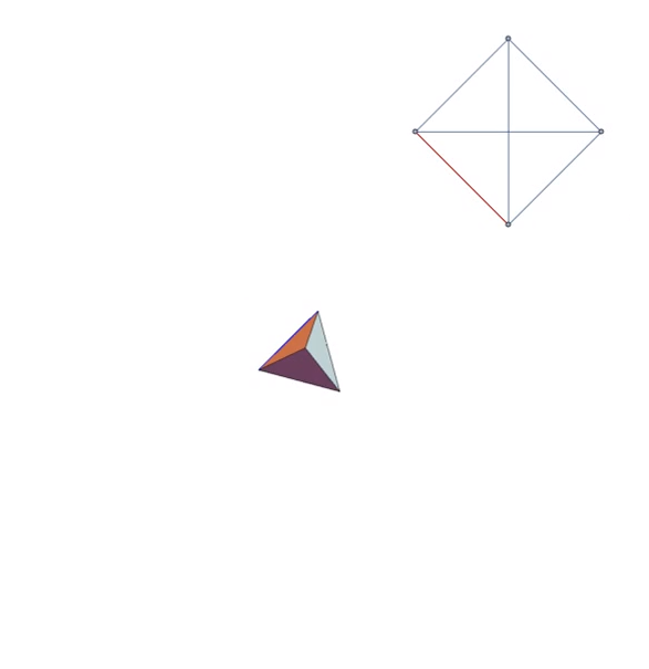 Polygon network at the start