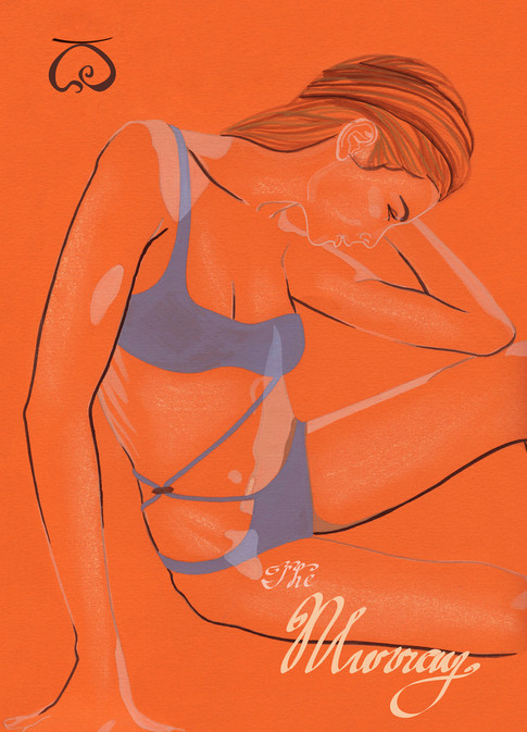 Murray_Illustration0ed.jpg