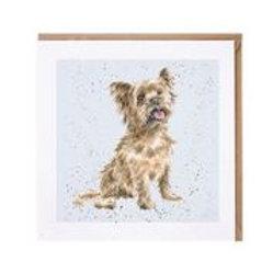 "Wrendale Designs "" a Dog's Life"" Karte Yorkshire Terrier"