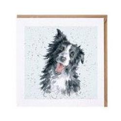 """Wrendale Designs """" a Dog's Life"""" Karte Border Collie"""