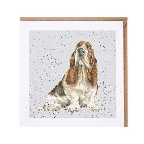 """Wrendale Designs """" a Dog's Life"""" Karte Basset"""