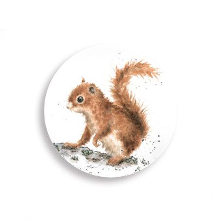 Wrendale Design Magnete Eichhörnchen