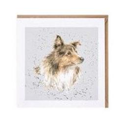 """Wrendale Designs """" a Dog's Life"""" Karte Langhaarcollie"""