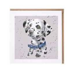 "Wrendale Designs "" a Dog's Life"" Karte Dalmatiner"