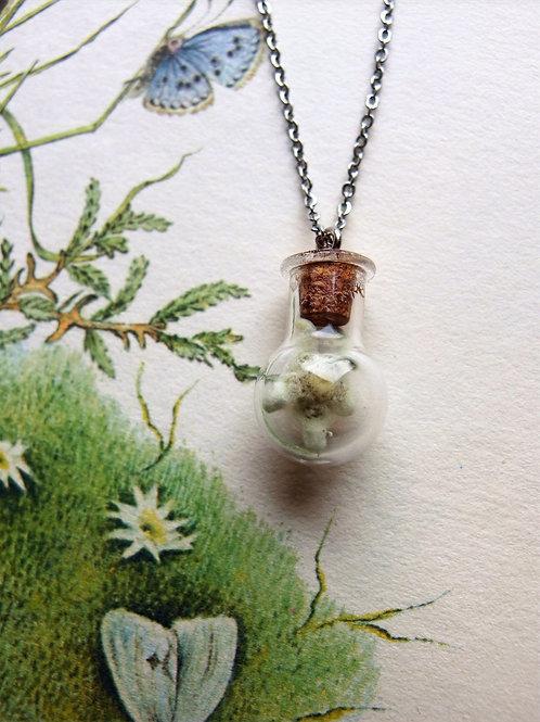 Halskette Kurz Edelweiß in Glasflasche