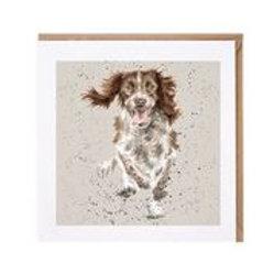 """Wrendale Designs """" a Dog's Life"""" Karte Springer Spaniel"""