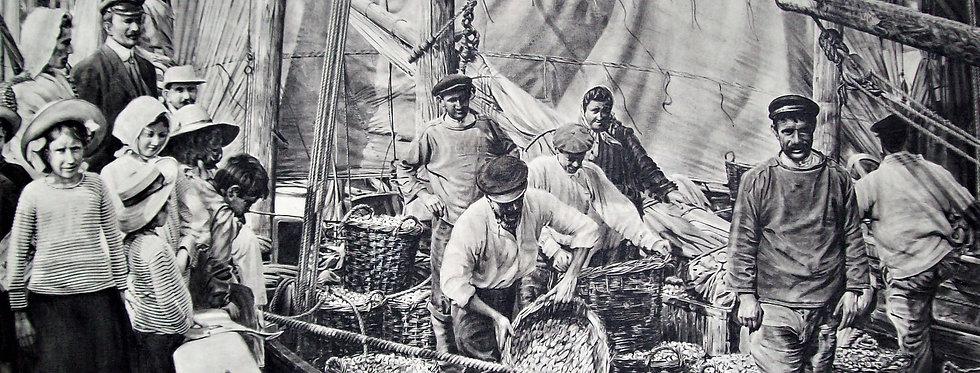 """Pêcheurs de coques """"Le Crotoy"""""""