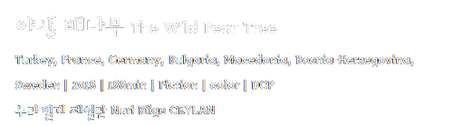 야생배나무.png