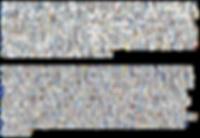 야생 배나무 작품정보.png