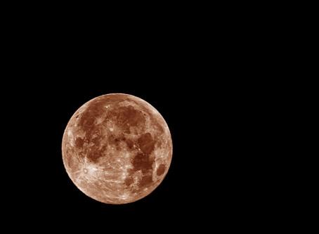 Super Wolf Blood Moon - Failure