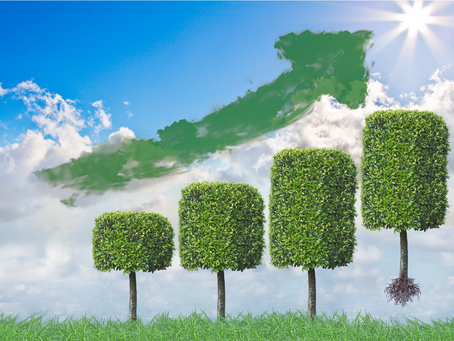 Responsible Investing:Why it isn't just a fad