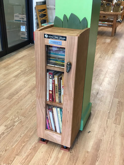 Little Free Library Cabinet