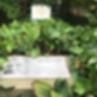 FriedhofPlanitz#AlfredLorenz2.jpg