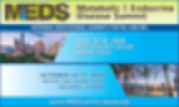 MEDS20_500_300_ASEPA.png