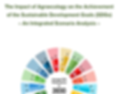 The Impact of Agroecology on the Achievement of the Sustainable Development Goals: An Integrated Scenario Analysis